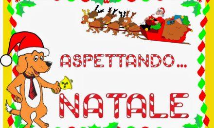 Organizzazione manifestazioni natalizie-plesso Pastena
