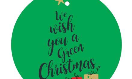 """Concorso """"Natale green… a Massa Lubrense"""""""